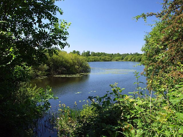 Sneyd Reservoir by Adambro (via Wikipedia)