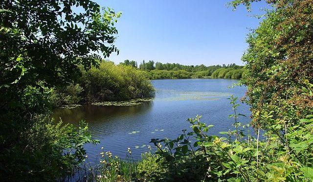 Sneyd Reservoir by Adambro (via Wikipedia)