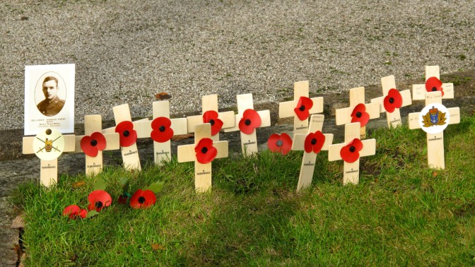 In Flanders Fields.