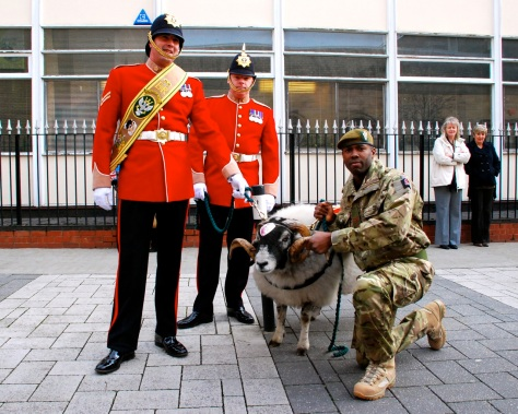 Private Derby, a Derbyshire ram goat is the regimental mascot, inherited from the Worcestershire and Sherwood Foresters