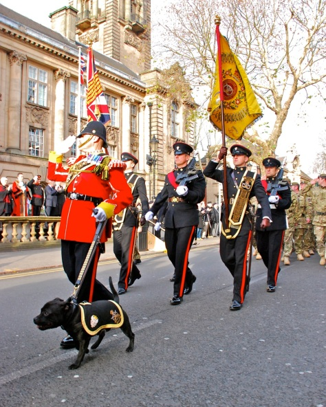 Watchman V, 'unofficial' mascot of the 3rd Battalion The Mercian Regiment (Staffords)