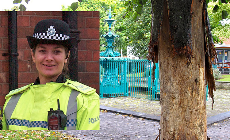 Sergeant Hannah Davies (inset) and tree damage