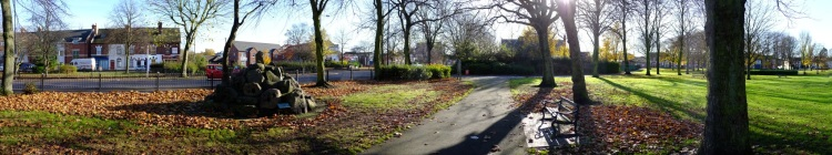 Bloxwich Park, our ancient village green: will those fallen leaves lie undisturbed in future?
