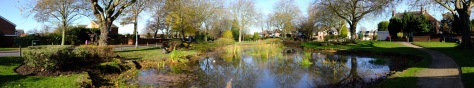 Wallington Heath Pool - an 18th century stagecoach halt saved from weed and neglect by parks staff.