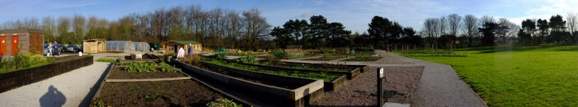 Panoramic view of the growing beds and grounds (click to enlarge)