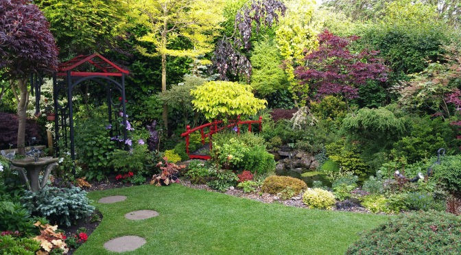Little Bloxwich garden opens for charity this Sunday