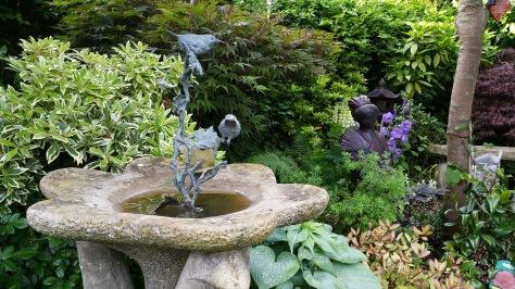The birds love the garden too!