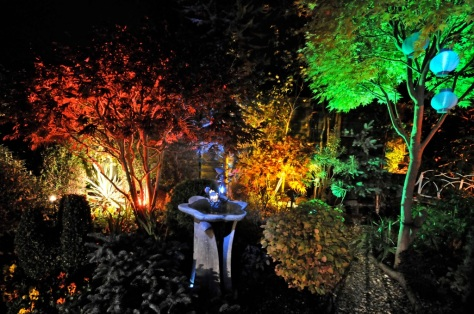 Part of the garden, illuminated in October 2009 - click on picture to see the 2009 album on Flickr