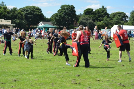 It's one-two kung-fu from Satori Martial Freestyle Arts group and young volunteers!