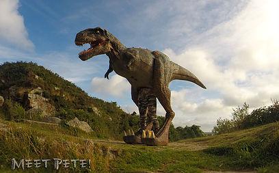 Meet Pete the Dinosaur!