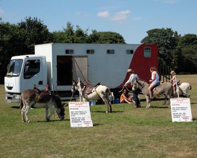 Donkey rides - seaside style!